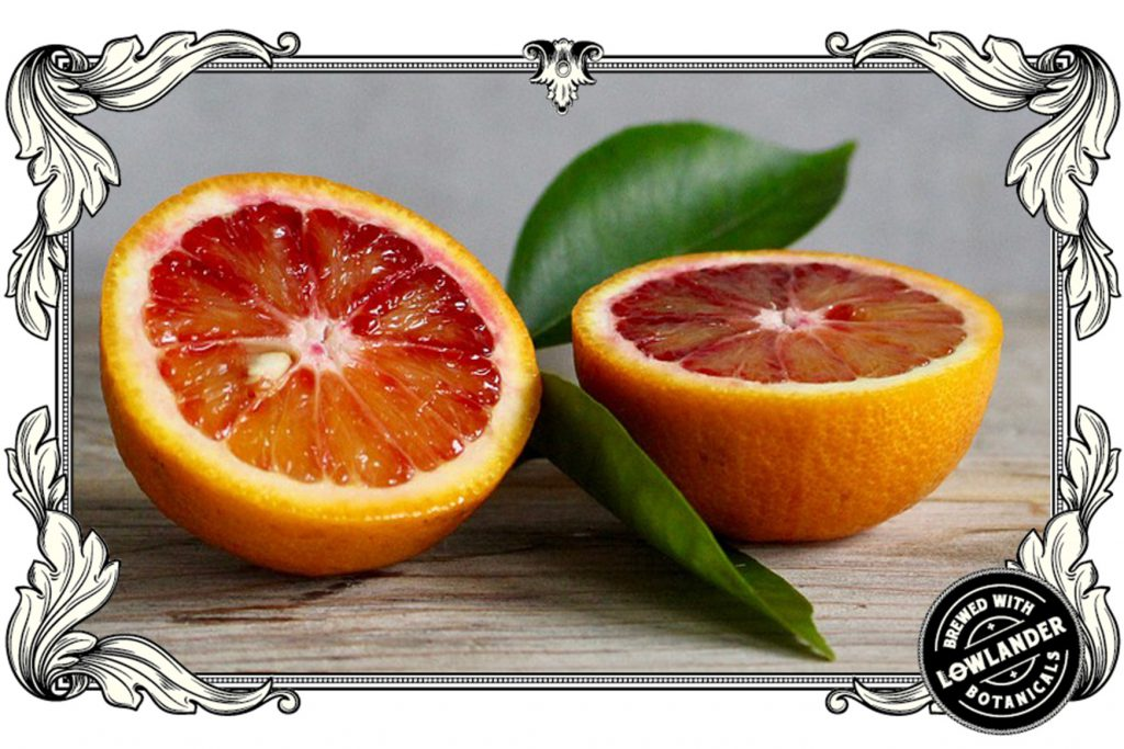 Lowlander_botanicals_blood orange