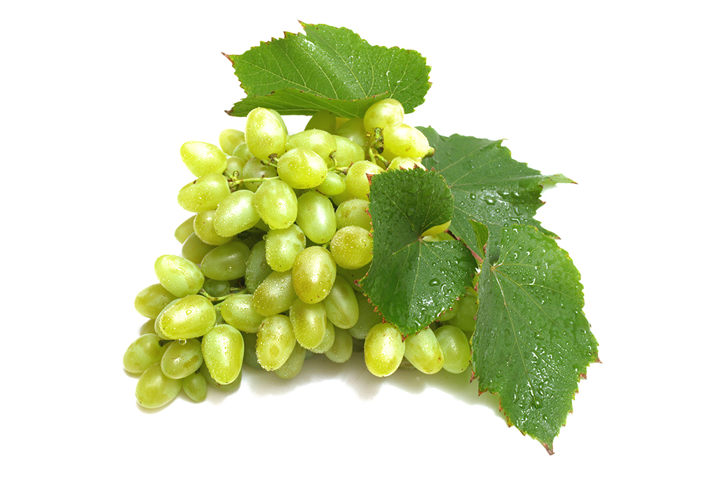 Lowlander Botanical Beers Grapes